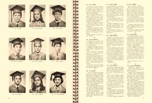 1974 3-D Sayfa4