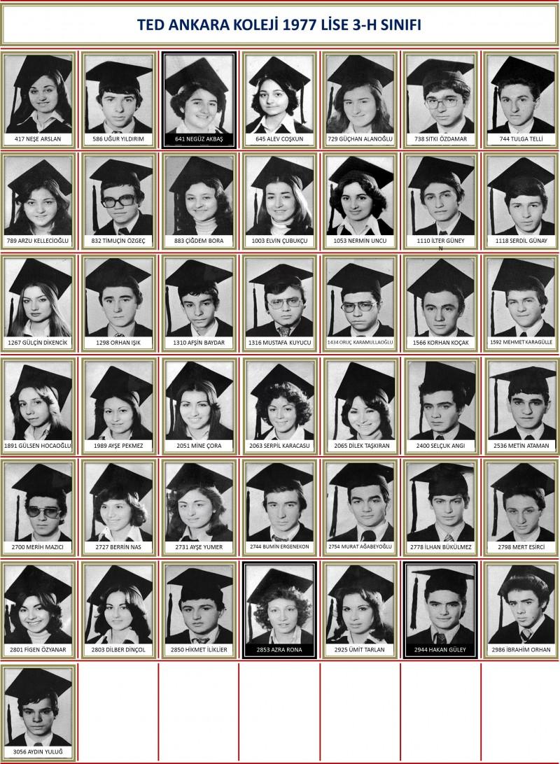 1977 3-H Sınıf toplu beyaz zemin