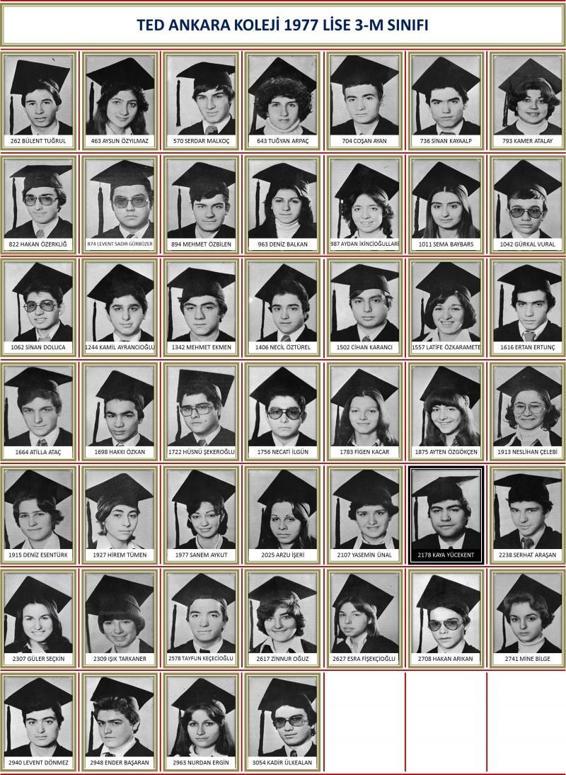 1977 3-M Sınıf toplu beyaz zemin
